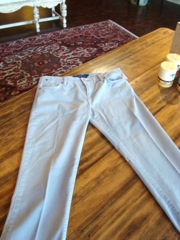 Sancutary Pants